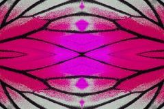 Geschilderde Jezebel Vlinder (Delias hyparete) Royalty-vrije Stock Afbeelding