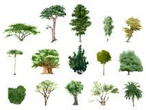 Geschilderde kleurenbomen stock illustratie