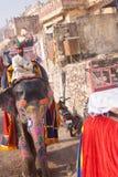Geschilderde olifant met ruiter in Jaipur royalty-vrije stock foto's