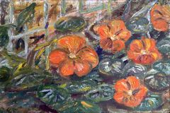 Geschilderde oranje bloemen in de tuin royalty-vrije illustratie
