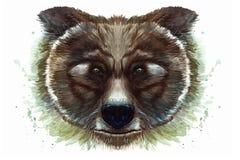 Geschilderde tekening met waterverfportret van een dierlijk zoogdier van een bruine beer op een witte achtergrond Royalty-vrije Stock Afbeeldingen
