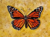 Geschilderde vlinder Stock Afbeelding
