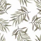 Geschilderde Watercolourhand Naadloos patroon met bladeren op een witte achtergrond Mooi ontwerp voor behang, textiel, stoffen royalty-vrije illustratie