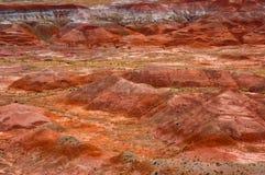 Geschilderde woestijn Royalty-vrije Stock Afbeeldingen