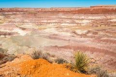 Geschilderde Woestijn Stock Foto's