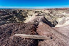 Geschilderde Woestijn Royalty-vrije Stock Fotografie