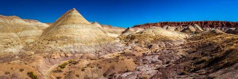 Geschilderde Woestijn Stock Foto