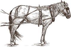 Geschirrpferd stock abbildung