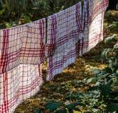 Geschirrtücher auf einer Wäscheleine im Wald Stockbilder