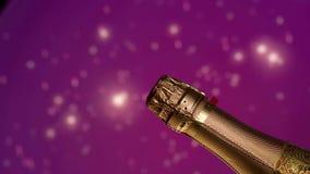 Geschlossene Champagnerflasche Purpurroter Hintergrund Video für Einladung an die Partei stock video