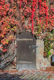 Geschlossene Tür mit Reben in Nürnberg-Schloss Lizenzfreies Stockbild