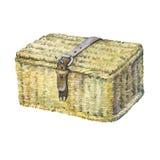 Geschlossener Koffer mit dem Lederband, geflocht von den Schilfen, trockene Wasserhyazinthe lizenzfreie abbildung