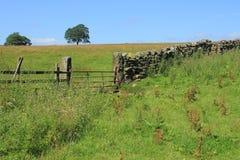 Geschlossener Zaun und eine große alte Steinwand im Sommer Lizenzfreies Stockfoto