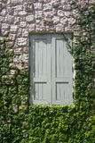 Geschlossenes hölzernes Fenster auf Steinwand mit Anlagen und Grün Stockbild