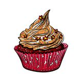 Geschmackvolle bunte kleine Kuchen lokalisiert auf weißem Hintergrund Lizenzfreie Stockfotos