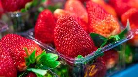 Geschmackvolle frische organische Erdbeerfrucht stockfotos