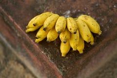 Geschmackvolle gelbe Bananen Lizenzfreies Stockfoto