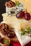 Geschmackvolle Käse. Lizenzfreie Stockbilder
