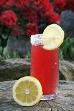 Geschmackvolle Limonade Stockbild