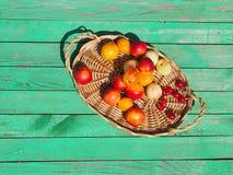 Geschmackvolle Nektarinen und Aprikosen auf einem Holztisch Stockbild