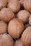 Geschmackvolle organische Kokosnüsse stockbilder