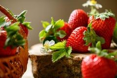 Geschmackvolle rote Erdbeeren auf Holz Stockbild