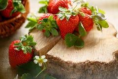 Geschmackvolle rote Erdbeeren auf rustikaler Tabelle Stockfoto