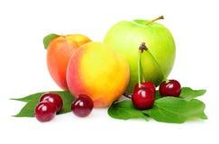 Geschmackvolle Sommerfrüchte Lizenzfreies Stockbild