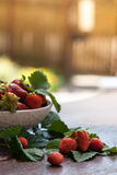 Geschmackvolle Sommerfrüchte auf einem Holztisch Stockfotos