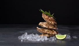 Geschmackvolle und frische Austern auf einem schwarzen Hintergrund Mollusken mit zerquetschtem Eis, Estragon und Kalk Köstliches  lizenzfreies stockbild