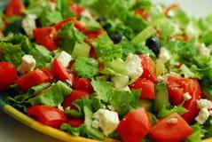 Geschmackvoller griechischer Salat mit Feta lizenzfreies stockbild