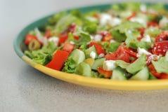 Geschmackvoller griechischer Salat mit Feta Lizenzfreie Stockfotos