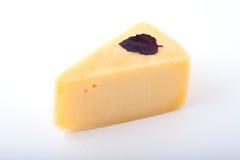 Geschmackvoller Käse mit einem Basilikumblatt Lizenzfreies Stockfoto