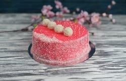 Geschmackvoller schöner süßer rosa Kuchen backte mit Dekoration Lizenzfreies Stockbild