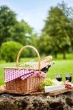 Geschmackvolles Frühlingspicknickmittagessen mit Rotwein lizenzfreies stockbild
