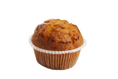 Geschmackvolles Muffin Lizenzfreie Stockbilder