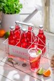 Geschmackvolles rotes Sommergetränk in der Flasche stockfotografie