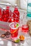 Geschmackvolles rotes Sommergetränk mit tadellosem Blatt stockfotografie