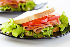 Geschmackvolles Sandwich Lizenzfreie Stockfotos