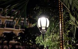 Geschmiedete Weinleselaterne belichtet die Bl?tter des Baums Helles Licht, das von einer Stra?enlaterne ausstr?mt stockfoto