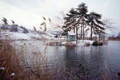 Geschneite Landschaft auf Seeheiligem Andre, Wirsing, Frankreich Lizenzfreies Stockfoto