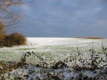 Geschneites Feld während des Winters Lizenzfreies Stockfoto