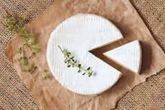 Geschnitten ringsum traditionelle Milch des Camembertkäses stockfoto