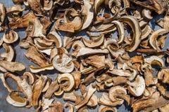 Geschnittene frische essbare Pilze des Boletus auf Metalloberfläche Trocknender Prozess unter Sonnenlicht lizenzfreie stockfotos