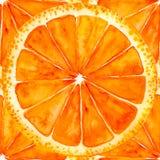 Geschnittene Orange oder Pampelmuse lizenzfreie abbildung