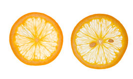 Geschnittene Orangen Lizenzfreie Stockfotografie