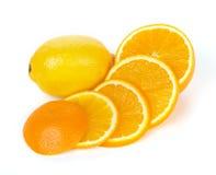 Geschnittene Orangen- und Zitronefrucht Stockbilder