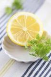 Geschnittene Zitrone Lizenzfreies Stockfoto