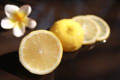 Geschnittene Zitrone auf dem Tisch mit weißer Blume im Hintergrund lizenzfreie stockfotografie