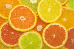 Geschnittene Zitrusfrüchte in den verschiedenen Farben Lizenzfreie Stockfotografie